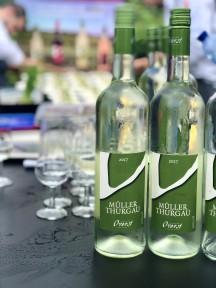 In Nuth tussen de wijnranken van Landgoed Overst Voerendaal beginnen we met een frisse, fruitige Muller Thurgau uit 2017. Deze druivensoort gedijt duidelijk prima op de kalkrijke bodem want ondanks de nieuwe oogst is hij al prima op dronk.